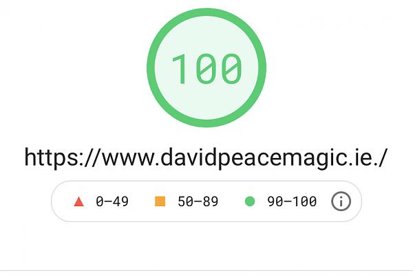 Bespoke website 100 page speed result